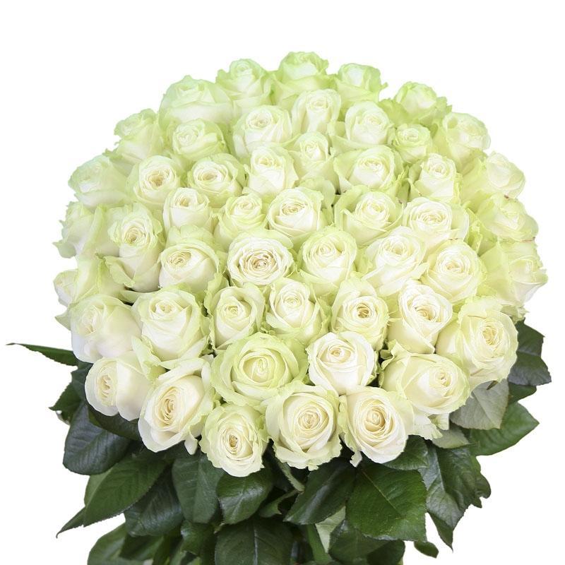 открытка шикарный букет белых роз этих местах привыкли