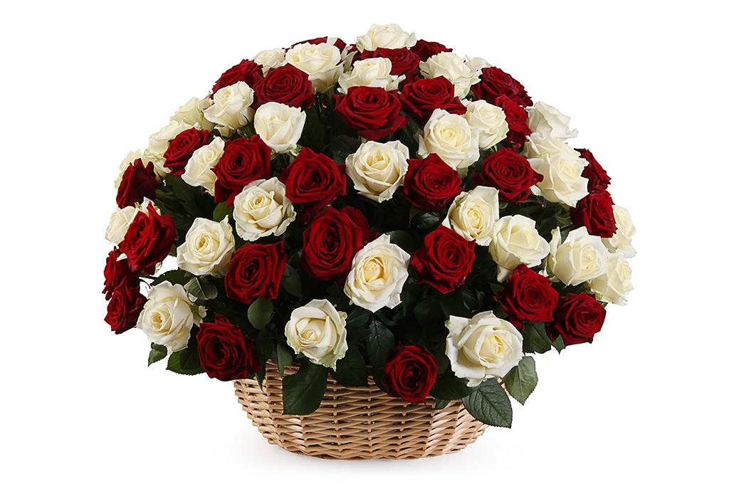 картинки с красными розами букеты большие кажется