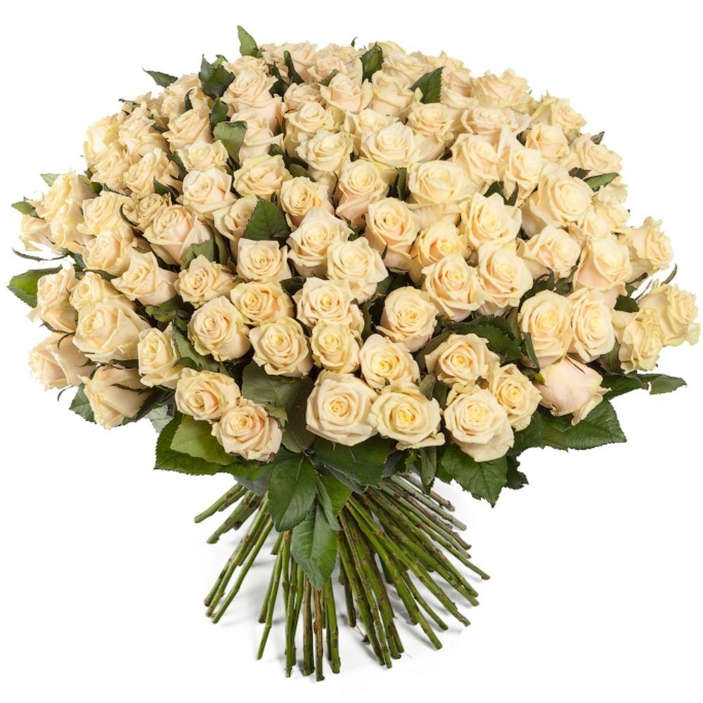 Букетные розы фото