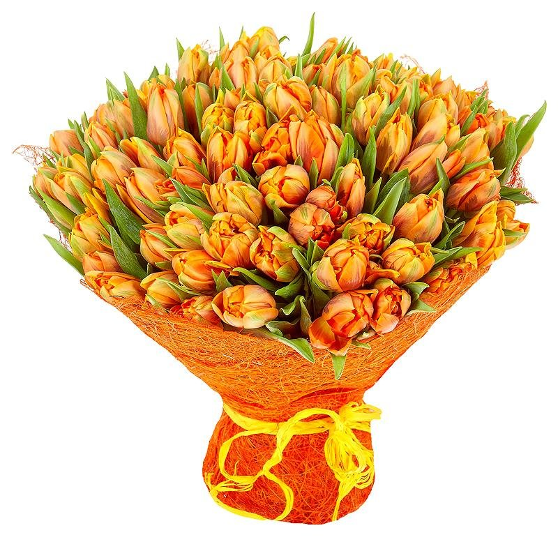 некоторых фото красивого букета тюльпанов часть жителей