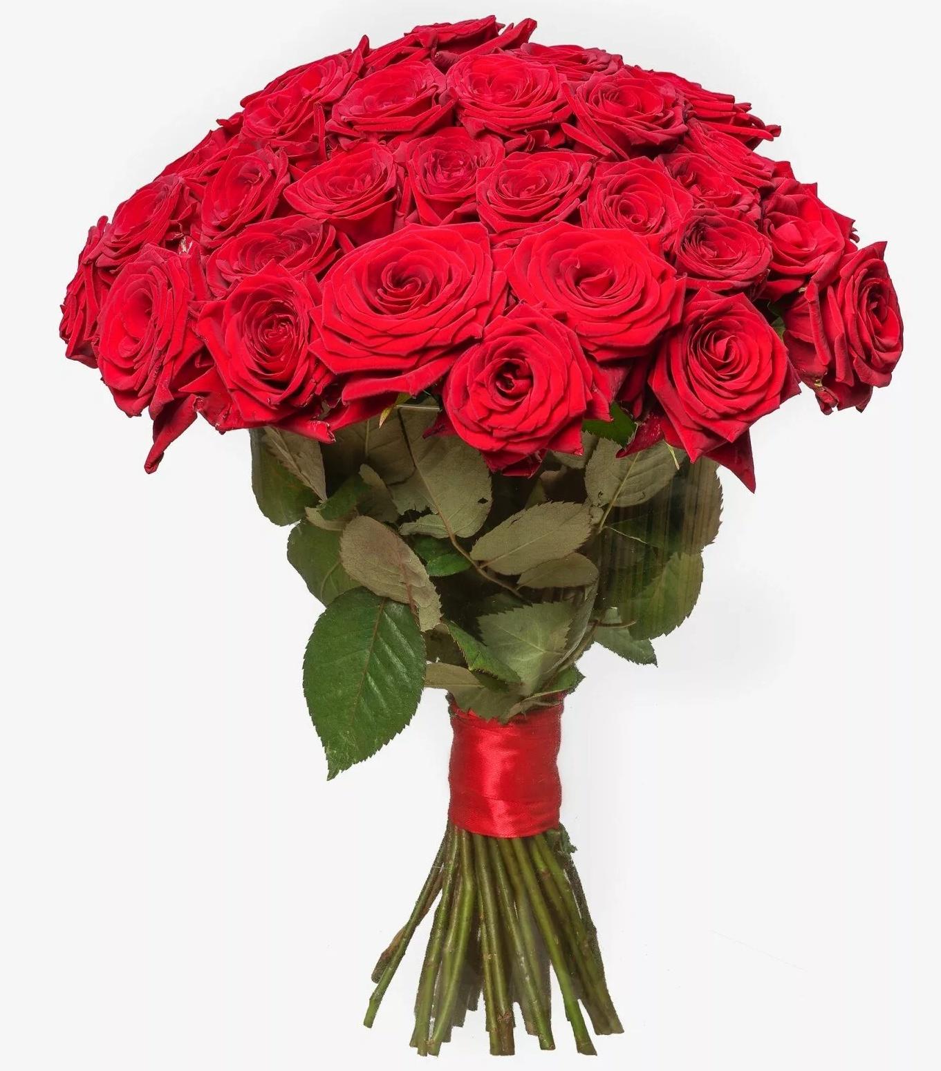 Красивый букет красных роз фото